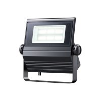 岩崎電気  レディオック フラッド ネオ ECF0485D/SA1/2/2.4/DG 昼光色タイプ 40W 超広角タイプ ダークグレイ