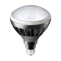 岩崎電気レディオックLEDアイランプ LDR14N-H/B850 14W 昼白色 本体黒色